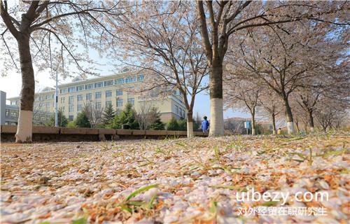 考取对外经济贸易大学在职研究生学位证容易吗